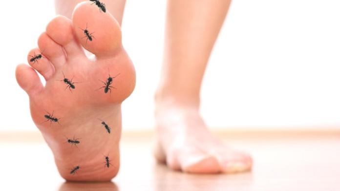 हाता पायाला मुंग्या येणे